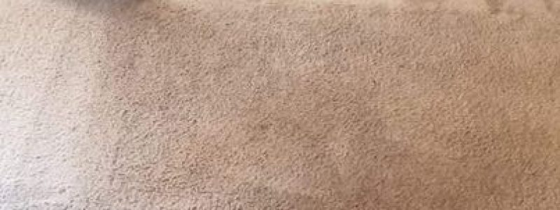 How often should you clean carpets